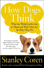 How Dogs Think book cover image