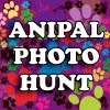 Join the Anipal Photo Hunt